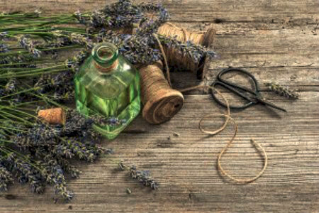 Lavender and Oil